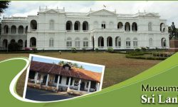 A Step Back in Time - Some of the Most Popular Museums in Sri Lanka