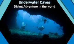Top Six Underwater Caves from around the World for a Diving Adventure