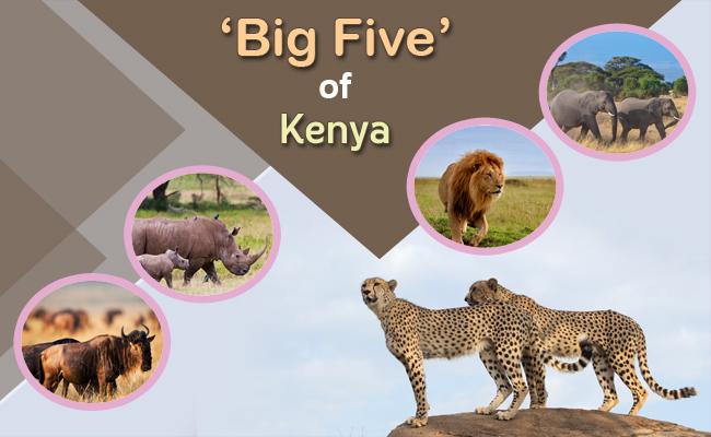 Kenya Big Five and Cultural Tour