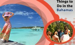 5 Offbeat Things to Do in the Bahamas