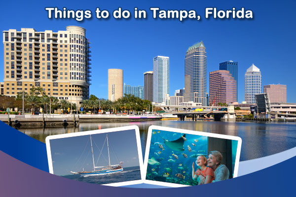 Best things to do in tampa florida for Best places to live in tampa fl