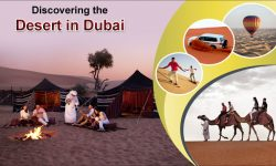 Discovering the Desert in Dubai