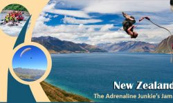 New Zealand - The Adrenaline Junkie's Jam!