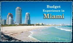Top Ways to Experience Miami on Budget