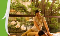 Where to Get the Best Thai Massage in Bangkok