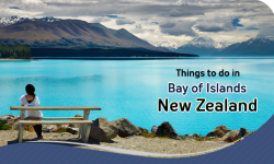 Top Things to do in Bay of Islands, New Zealand