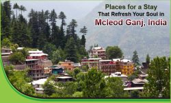 Top Five Places for a Stay That Refresh Your Soul in Mcleod Ganj, India