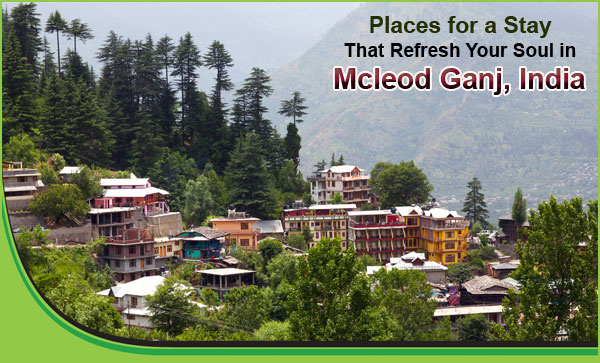 Places-for-a-Stay-That-Refresh-Your-Soul-in-Mcleod-Ganj-India