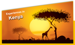 Five Experiences in Kenya Your Tourist Guide Didn't Tell You About