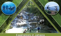 Start Your Jamaica Exploration with These Top Five Experiences
