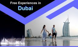 Top Five Free Experiences in Dubai