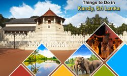 Top Things to Do in Kandy, Sri Lanka