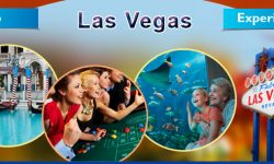 Top Five Las Vegas Experiences