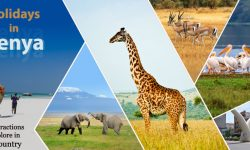 Holidays in Kenya - Top Attractions to Explore In the Country
