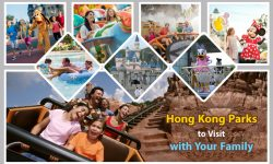 Top Five Hong Kong Parks to Visit with Your Family