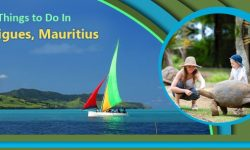 Top Things to Do In Rodrigues, Mauritius