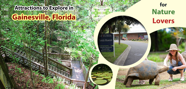 Attractions-to-Explore-in-GainesvilleFlorida-for-Nature-Lovers