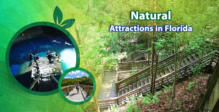 Natural-Attractions-in-Florida