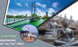 Top Colombo Experiences that You Can't Miss