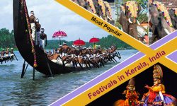 Most Popular Festivals in Kerala, India