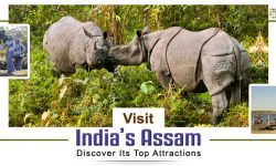 Visit India's Assam and Discover Its Top Attractions