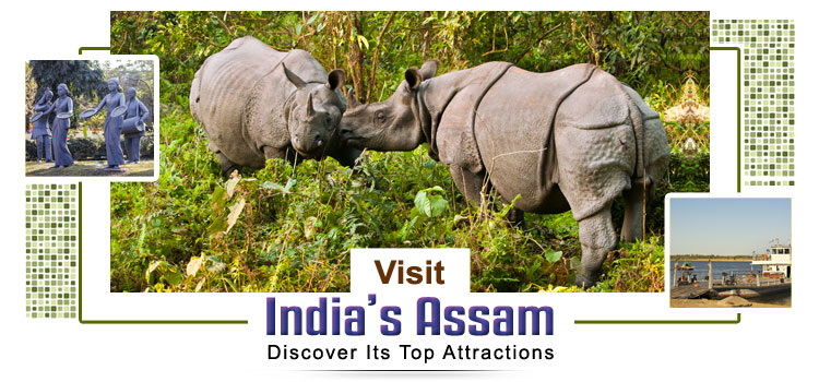 Visit-Assam-and-Discover-Its-Top-Attractions