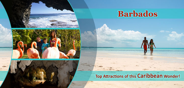 Barbados-Top-Attractions-of-this-Caribbean-Wonder