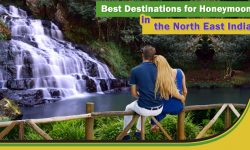 Best Destinations for Honeymoon in the North East India