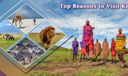 5 of the Top Reasons to Visit Kenya