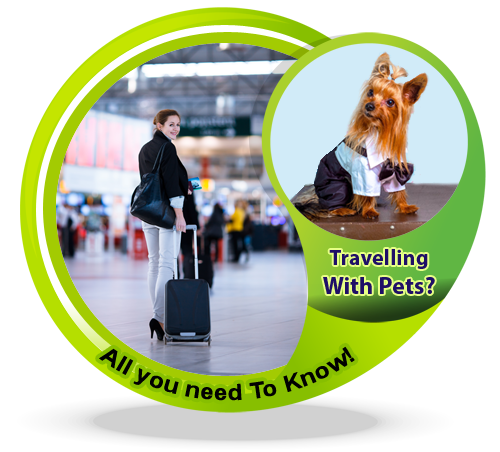 Travelling-With-Pets-All-you-need-To-Know