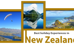 Holidays to New Zealand: 5 of the Best Experiences in the Country
