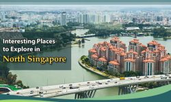 5 Interesting Places to Explore in North Singapore