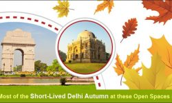 Make the Most of the Short-Lived Delhi Autumn at these Open Spaces in the City