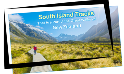 Five of the Best South Island Tracks That Are Part of the Great Walks of New Zealand