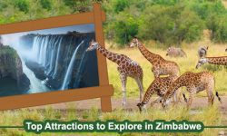 Top Attractions to Explore in Zimbabwe