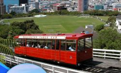Five Free Things to Do in Wellington, New Zealand