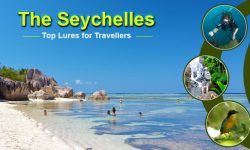 The Seychelles' Top Lures for Travellers