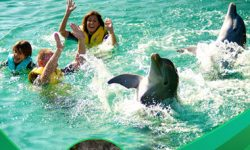 Top Family Holiday Experiences in Dominican Republic