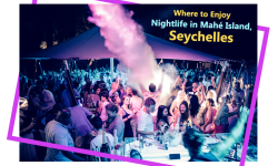 Where to Enjoy Nightlife in Mahé Island, Seychelles
