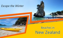 Escape the Winter at these Top 5 Beaches in New Zealand
