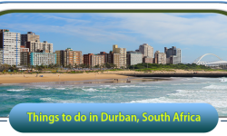 Top 5 Things to do in Durban, South Africa